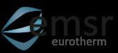 emsr Logo abstrakt_calibri schlagschatten_3